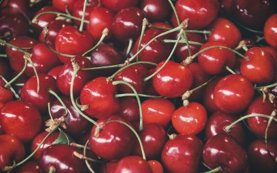 Cherries | Fruit of the Month