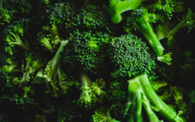 Broccoli | Veggie of the Month